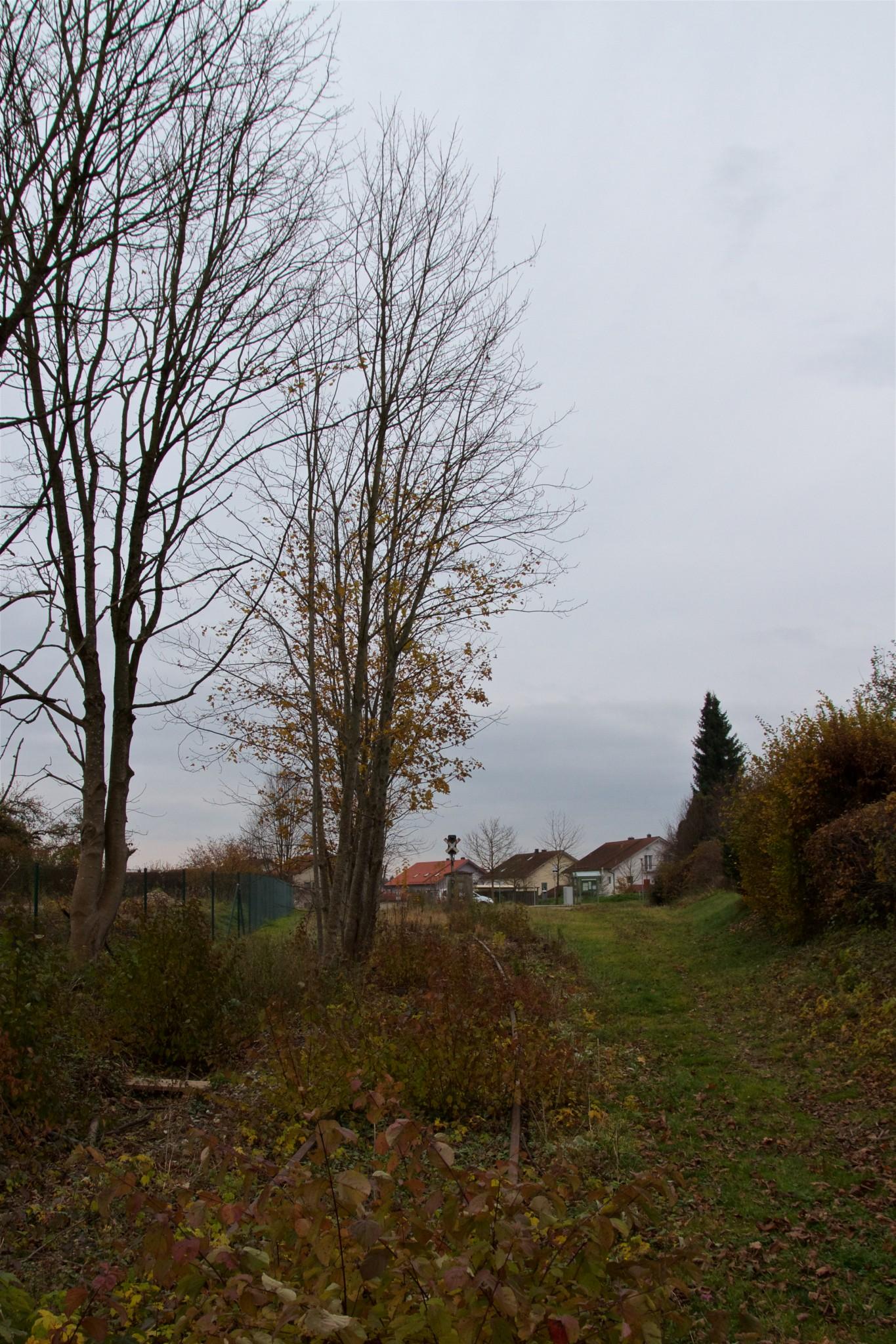Streckendetail in der Nähe der Megglestraße