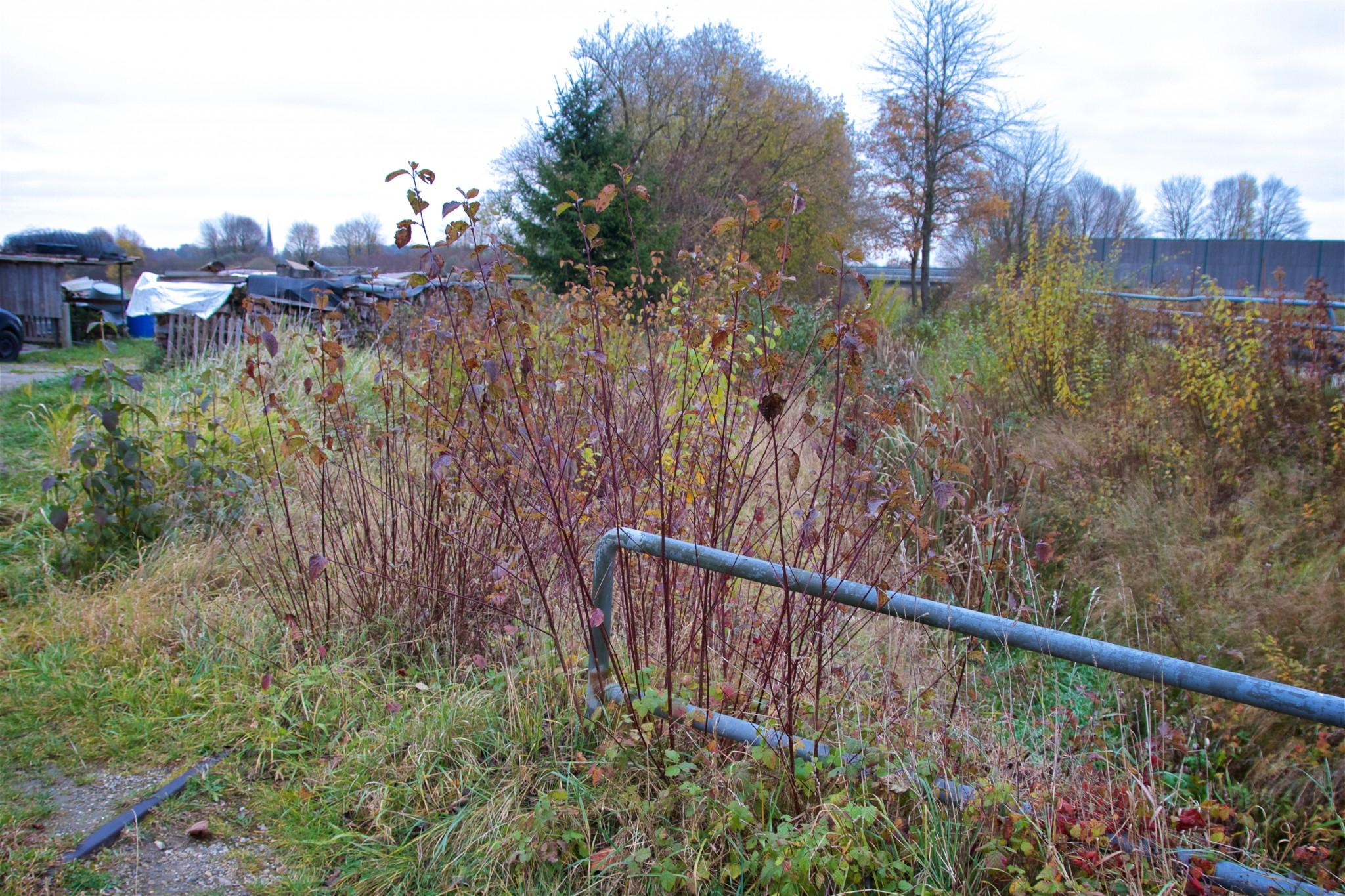 Gleis mit sumpfigem Graben Nähe B15