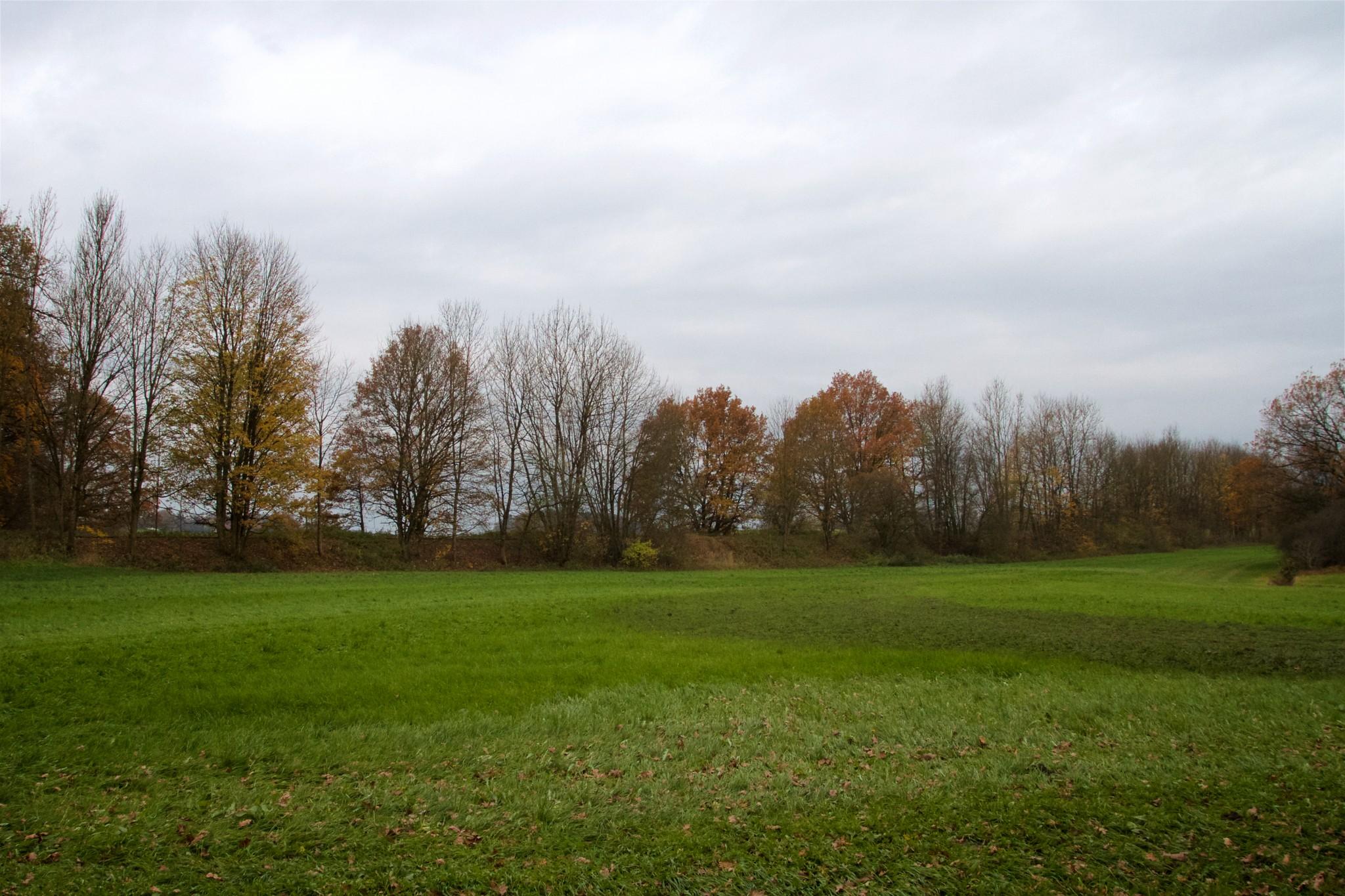 Bahndamm zwischen B15 und Gaberseer Graben