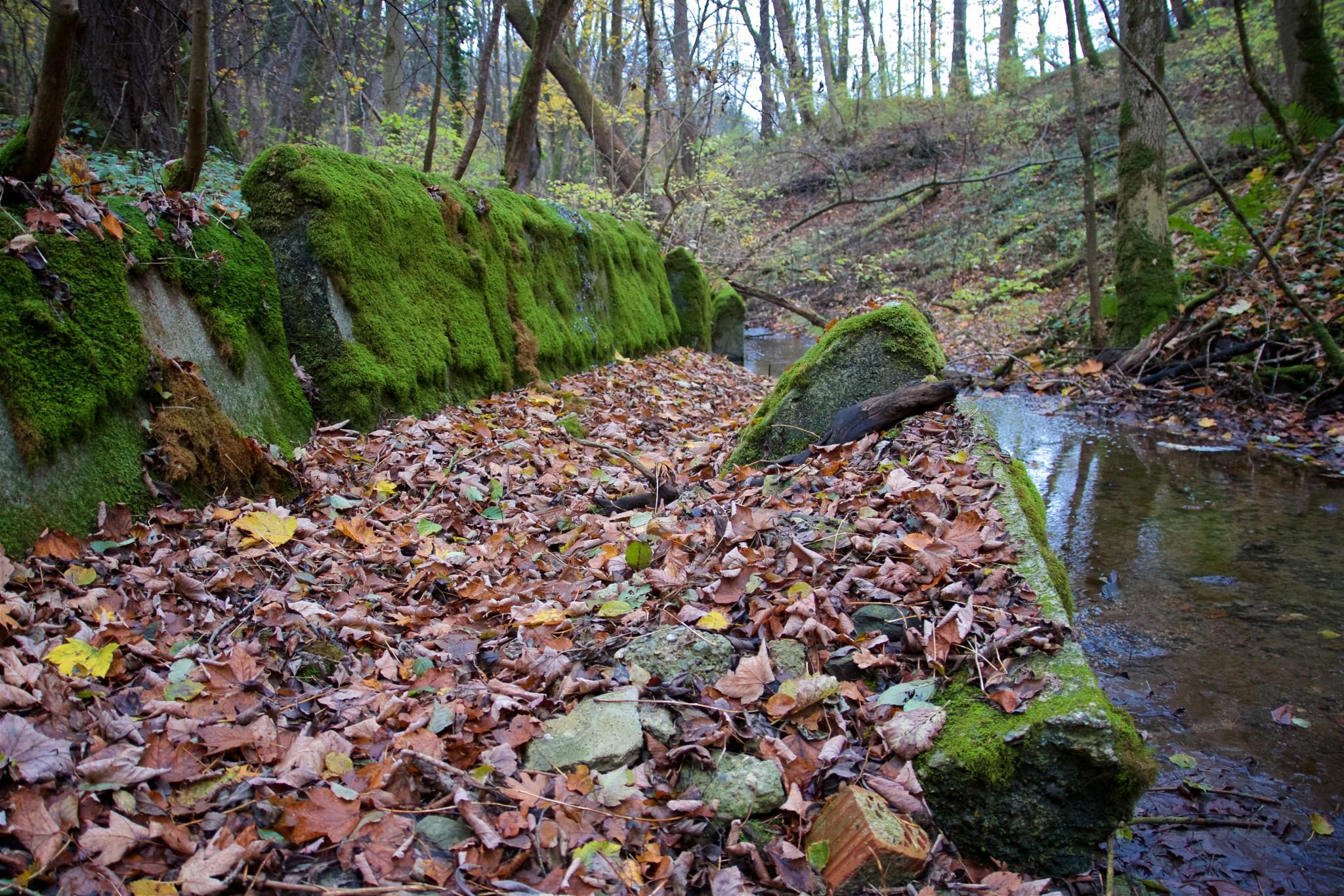 Kanalelemente im Gerner Graben